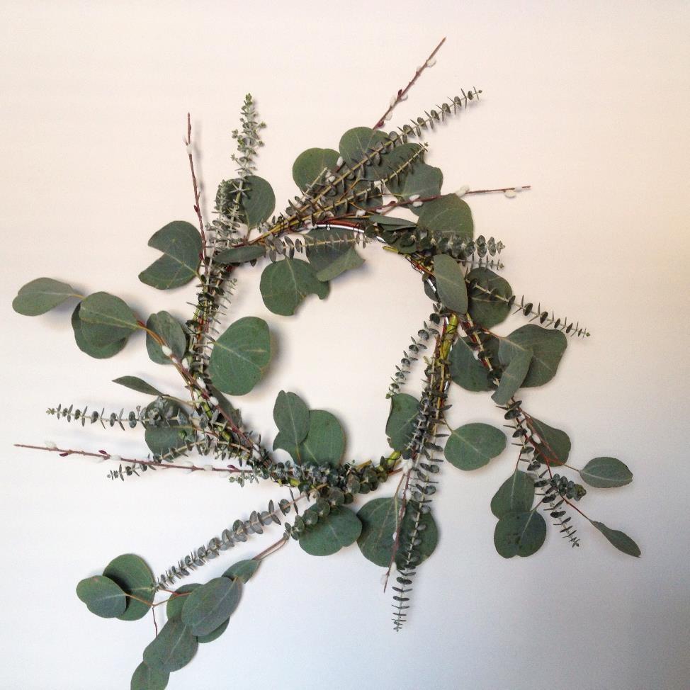 DIY Fresh Eucalyptus Wreath | AMODERNCINDERELLA.COM
